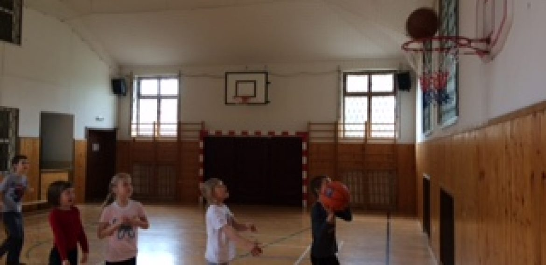 Basketbalové koše