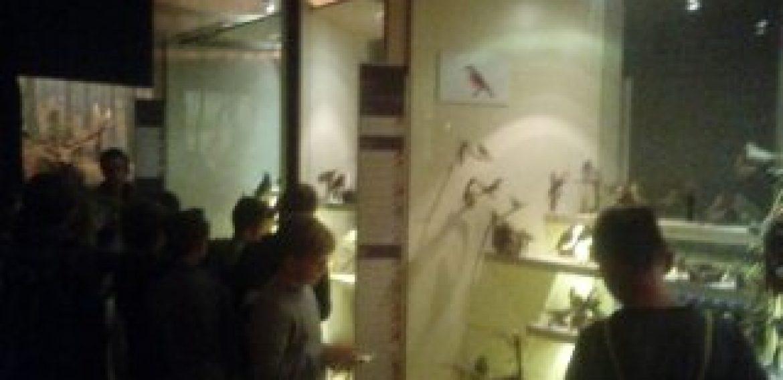 V. A a V. B v prírodovednom múzeu