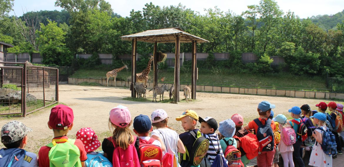 Výlet do ZOO