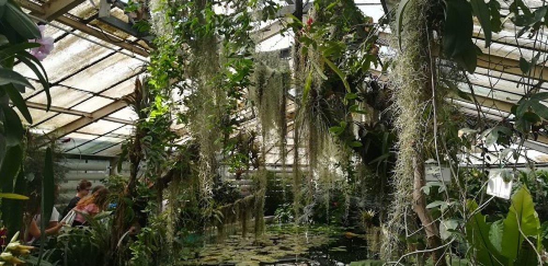 Botanická záhrada