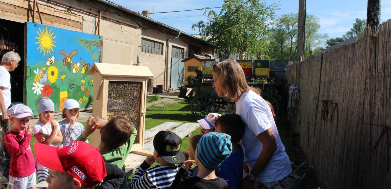 Včelárstvo Dedinský